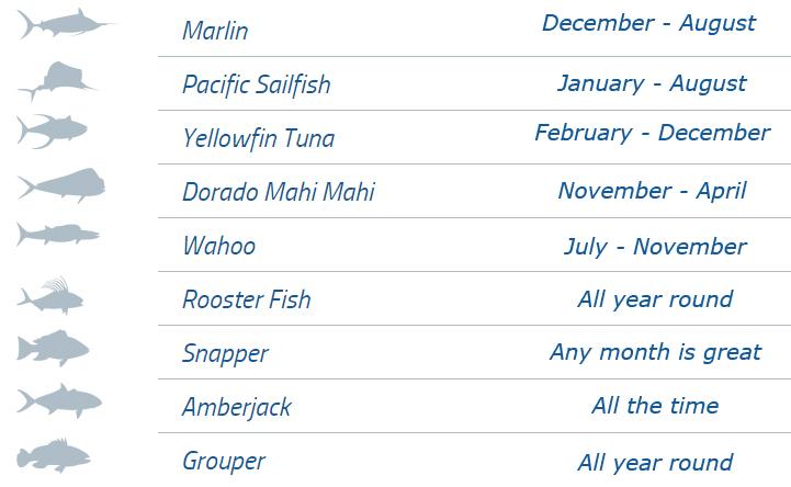 fishing calendar