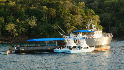home-journey-bay-accomodation-sportfishing-panama